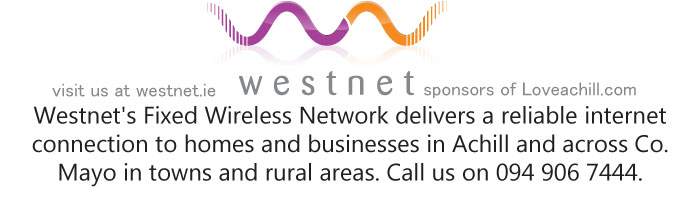visit us at westnet.ie